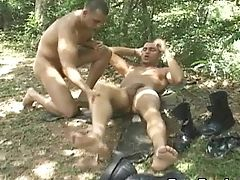 Forest, HD, Mature, Military,
