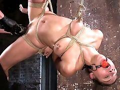 BDSM, Bondage, Experienced, Gagging, Hardcore, Hogtied, Masturbation, Rough, Slut,