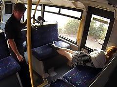 Amador, Gata, Britânicas, No ônibus, Peluda, Pov, Público , Realidade , Grosseira, Dormir,