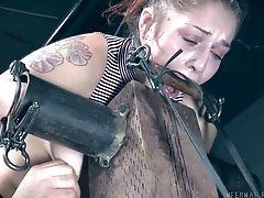 Kinky: 280 Videos