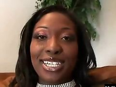 Pau Grande Negro: 719 Vídeos