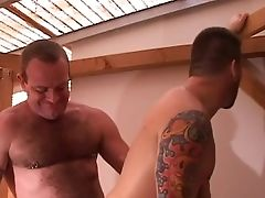 Bareback, Bear, Big Cock, Fetish, Fucking, Kinky, Leather, Riding, Rough,