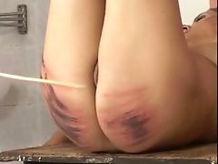 Ass, Babe, BDSM, Femdom, Fetish, Mistress, Punishment, Screaming, Spanking,